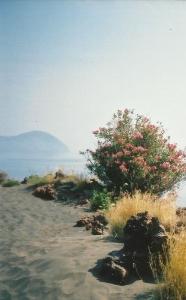Lipari, rare flora
