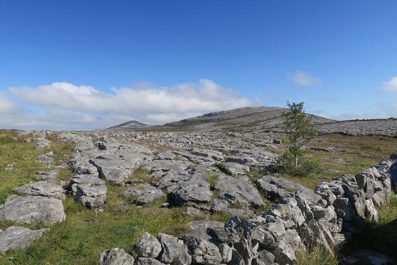 Národný park Burren je na prvý pohľad skalnatá zem.