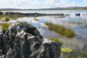 Jazero medzi vápencovými kameňmi.