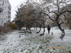 Bratislava under snow