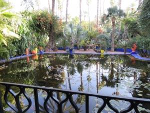Záhrada YSL 1