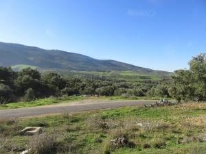 Zelené údolie 1