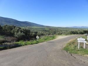 Zelené údolie 2