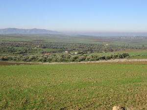 Zelené údolie 3